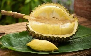 Фрукт дуриан – как выглядит,  полезные и опасные свойства