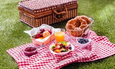 Лучший пикник на природе: идеи, меню, вкусные блюда